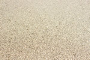 Pacific Shore Sand Patterns