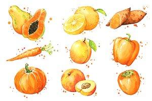 Set of orange foods, watercolor