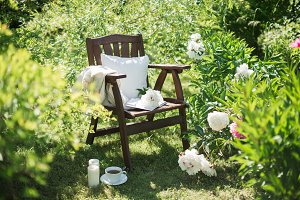 wooden chair in the garden and a cup
