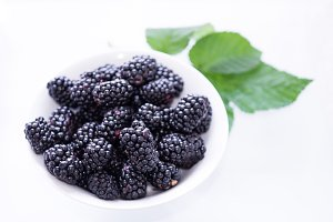 White plate and black berries. Green leaf. Copyspace.
