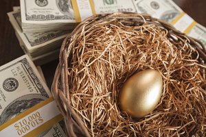 Golden Egg in Nest with Thousands of Dollars on Table.