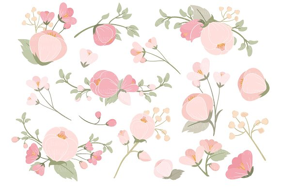 Soft pink flower clipart vectors illustrations creative market mightylinksfo
