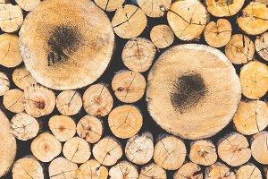 Cut wood background