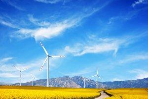 Wind turbines on a spring field