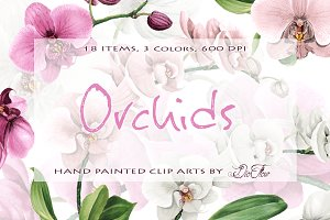 Orchid Watercolor Clip Art