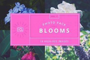 Blooms - Vol.1