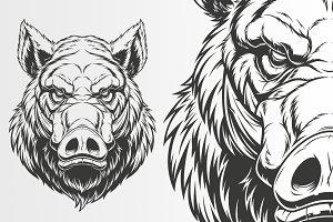 Head ferocious boar