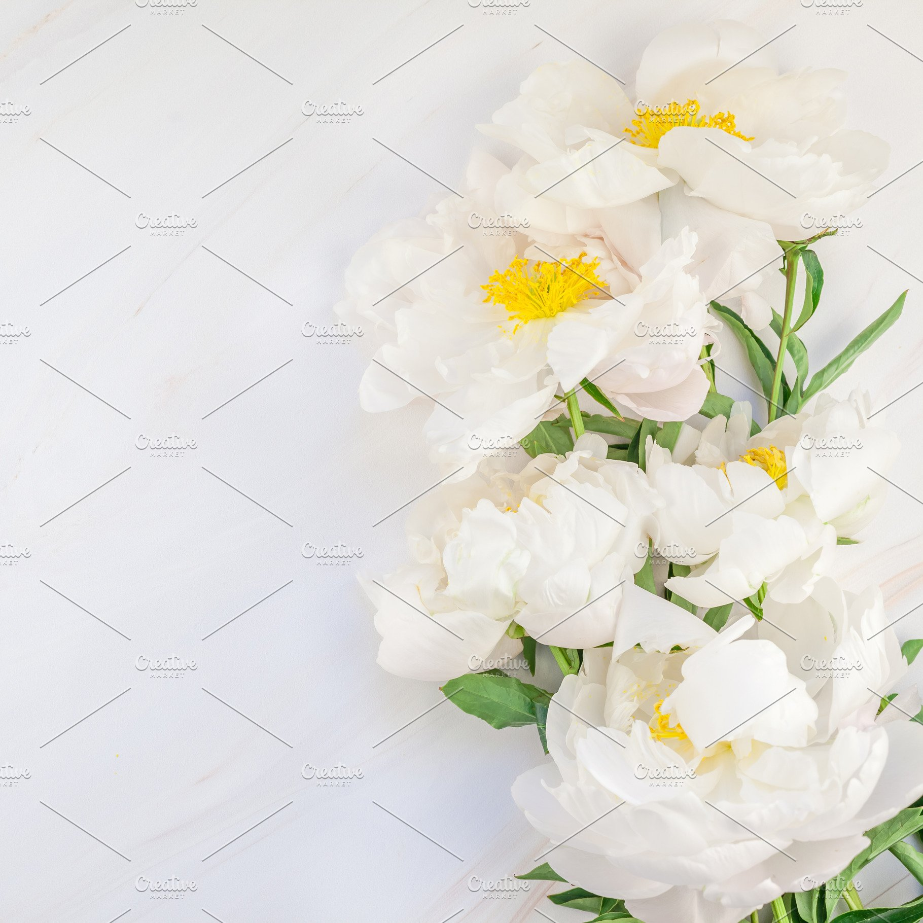 White Peony Flowers On Marble Arts Entertainment Photos