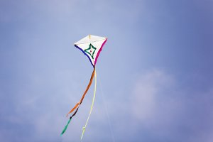 Holiday of kites