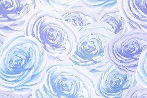 Bright blue and white rosebuds