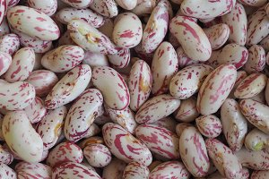 crimson beans legumes vegetables food