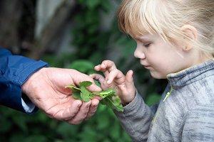 A man's hand shows a child a caterpillar