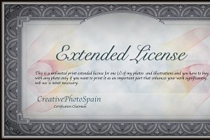 -----------EXTENDED LICENSE--------