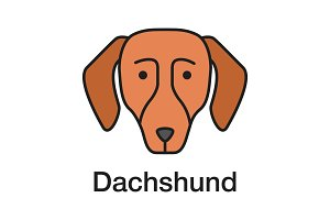 Dachshund color icon
