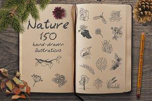 Hand Drawn Illustrations -Nature-