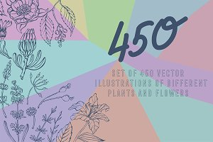 Vector plants and flowers