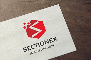 Letter S - Sectionex Logo