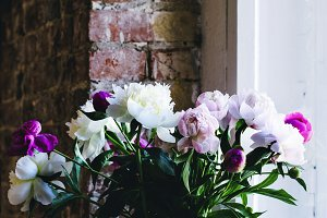 Peonies at window sill