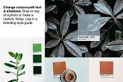 Pantone Colour Mockup Bundle