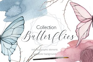 Collection Butterflies