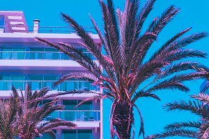 Palms and hotel against the blue sky