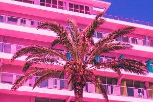 Pink hotel, palm, blue sky