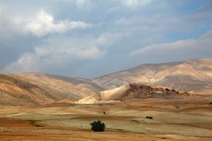 desert Sinai