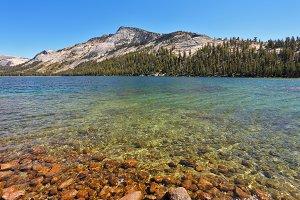 Lake on pass Tioga