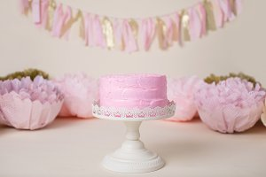 Pink Gold Birthday Cake Portrait