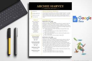 Modern Resume Template Google Docs