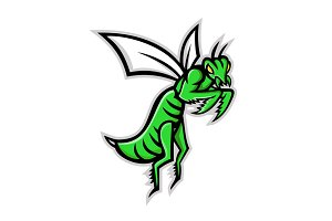 Praying Mantis Mascot