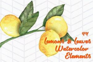 44 Lemon and Leaves Watercolor Art