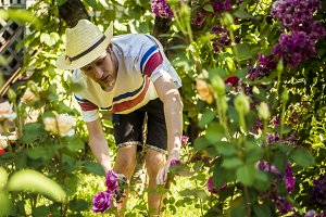 young florist working in summer hat in garden with roses flowers