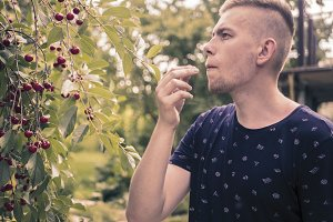 side portrait of young man in casual shirt gathering berry from the tree in garden
