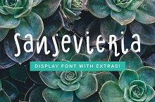 Sansevieria Display Font + Extras