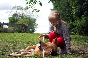 Dog and child together