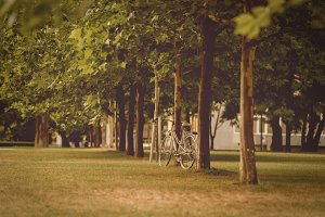 Lonely bicycle in the park