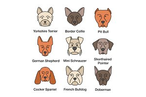Dogs breeds color icons set