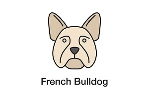 French Bulldog color icon
