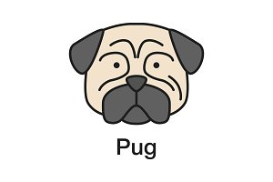 Pug color icon