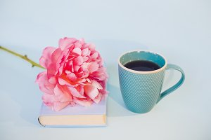 Peony flower and blue book