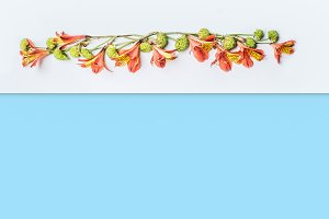 Floral border with exotic flowers