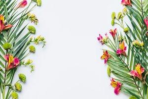 Summer tropical design frame