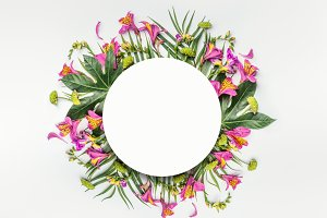 Summer tropical round flowers frame