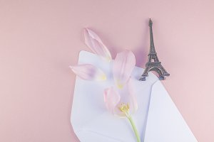 Pink tulip in envelope with eiffel
