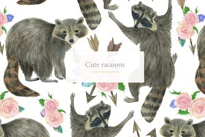 Cute racoons