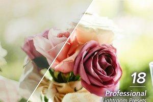 18 Professional Lightroom Presets