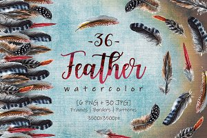 Delightful feathers PNG watercolor