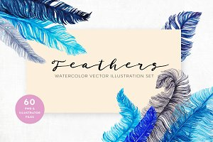 60 Watercolor Vector Feathers