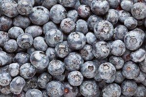 Bunch of Blueberries Background Macro Image.
